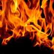 Fire close up - Stock Photo