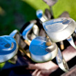 Abstract golf clubs — Stock Photo #7772603