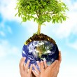 Stock Photo: Altogether saving the planet