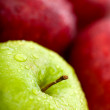 Apples in green and red - Stock Photo