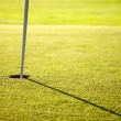 Golf hole — Stockfoto #7772688