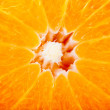 Royalty-Free Stock Photo: Delicious orange - background