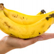 Bunch of bananas — Stock Photo #7772698