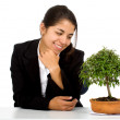 Business girl with a tree on her desk — Stock Photo