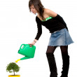 Stock Photo: Girl watering a tree