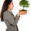 Business woman holding a bonsai — Stock Photo