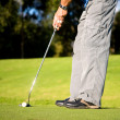 Royalty-Free Stock Photo: Male golfer about to shot