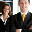 Business office partners — Stock Photo