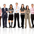 Business team standing — Stockfoto #7773393