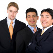 Business team - men only — Stock Photo #7774320