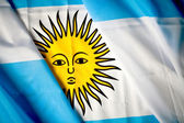 Argentinean flag — Stock Photo