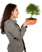 Business woman holding a bonsai — Stock Photo