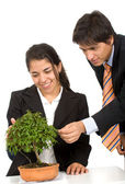 Business growth and development — Stock Photo