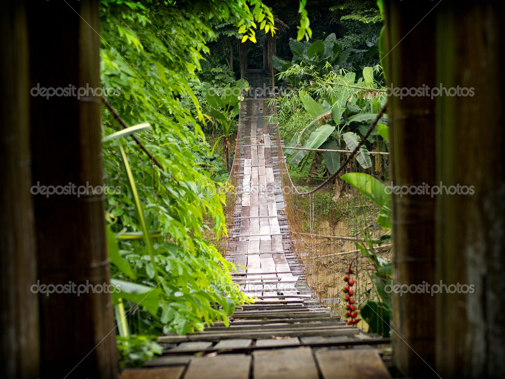 Wooden suspension bridge in Sabah, Malaysia. — Stock Photo #7656006