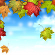 Autumn leaves with the blue sky background — Stock Photo