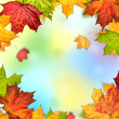 Colorful autumn leaves frame — Stock Photo #7633409