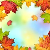 Barevné podzimní listí rám — Stock fotografie
