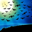 Horror bats full moon background — Stock fotografie