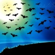 Horror bats full moon background - Stock Photo
