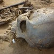 Stock Photo: Skeleton of ancient mfound during excavations in flood zo