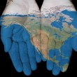 Stock Photo: North AmericIn Our Hands