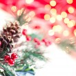 Christmas branch close up — Stock Photo #7667788