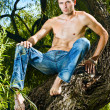 Handsome topless male model in jeans trousers sitting on a tree — Stock Photo
