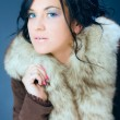 Portrait of attractive, dark hair girl, female model in fur — Stock Photo