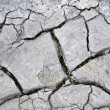 Drought, natural old dry cracked ground texture background, desert, geology — Stock Photo