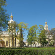 The Peter and Paul Fortress in Saint Petersburg. — Stock Photo #7742132
