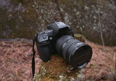The all-weather reflex camera in the forest. — Stock Photo