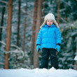 Stock Photo: Portrait of a little boy playing outdoors in a winter forest