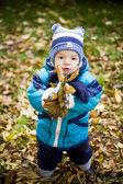 Autumn Boy — Stock Photo