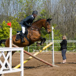 Practice before showjumping — Stock Photo