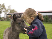 Girl and the foal — Stock Photo