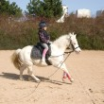 Girl on galloping ponny — Stock Photo
