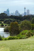 Sydney park — Stock Photo