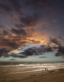 Couple walking dog on beach at sunset — Stock Photo
