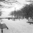 Chicago Winter — Stock Photo #7872704