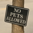 Stock Photo: No Pets Allowed