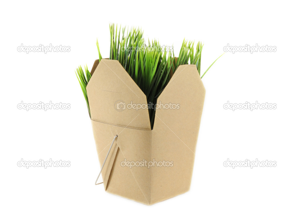 Brown grocery box with grass inside over white background — Stock Photo #7872388