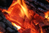 Camp Fire Close Up — Stock Photo