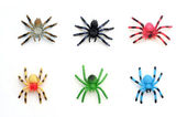 Collection of Colorful Plastic Toy Spiders — Stock Photo