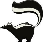 Skunk — Stockvector