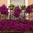 Royalty-Free Stock Photo: Spanish Balcony