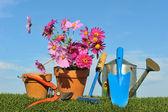 Gardening concept three — Stock Photo