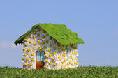 Ecological house — Stock Photo