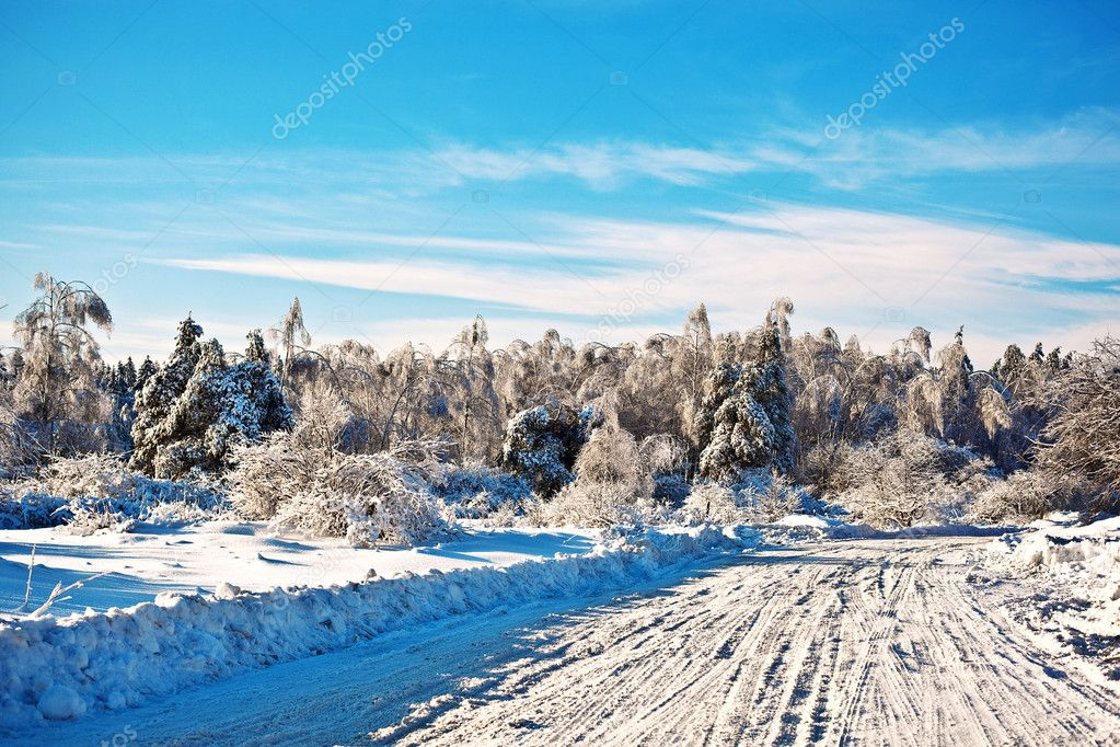Chrismas; clouds; cold; winter; wood  Stock Photo #7810290