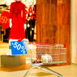 Shopping — Stock Photo #7941665
