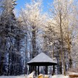 Hut in winter forest — Stock Photo #7743299